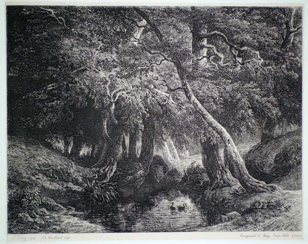 Francois DIDAY (Svizzera, 1802 – 1877) – SOTTOBOSCO CON RUSCELLO (1848)