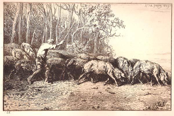 Charles JACQUE (Francia, 1813 – 1894) – TROUPEAU DE PORCS SORTANT D'UN BOIS (1849)