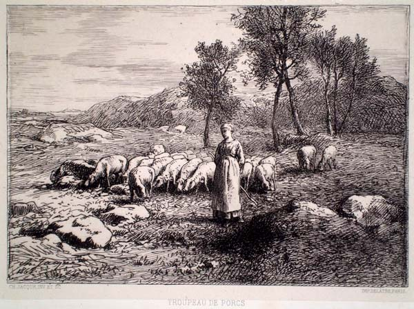 Charles JACQUE (Francia, 1813 – 1894) – TROUPEAU DE PORCS (1868)
