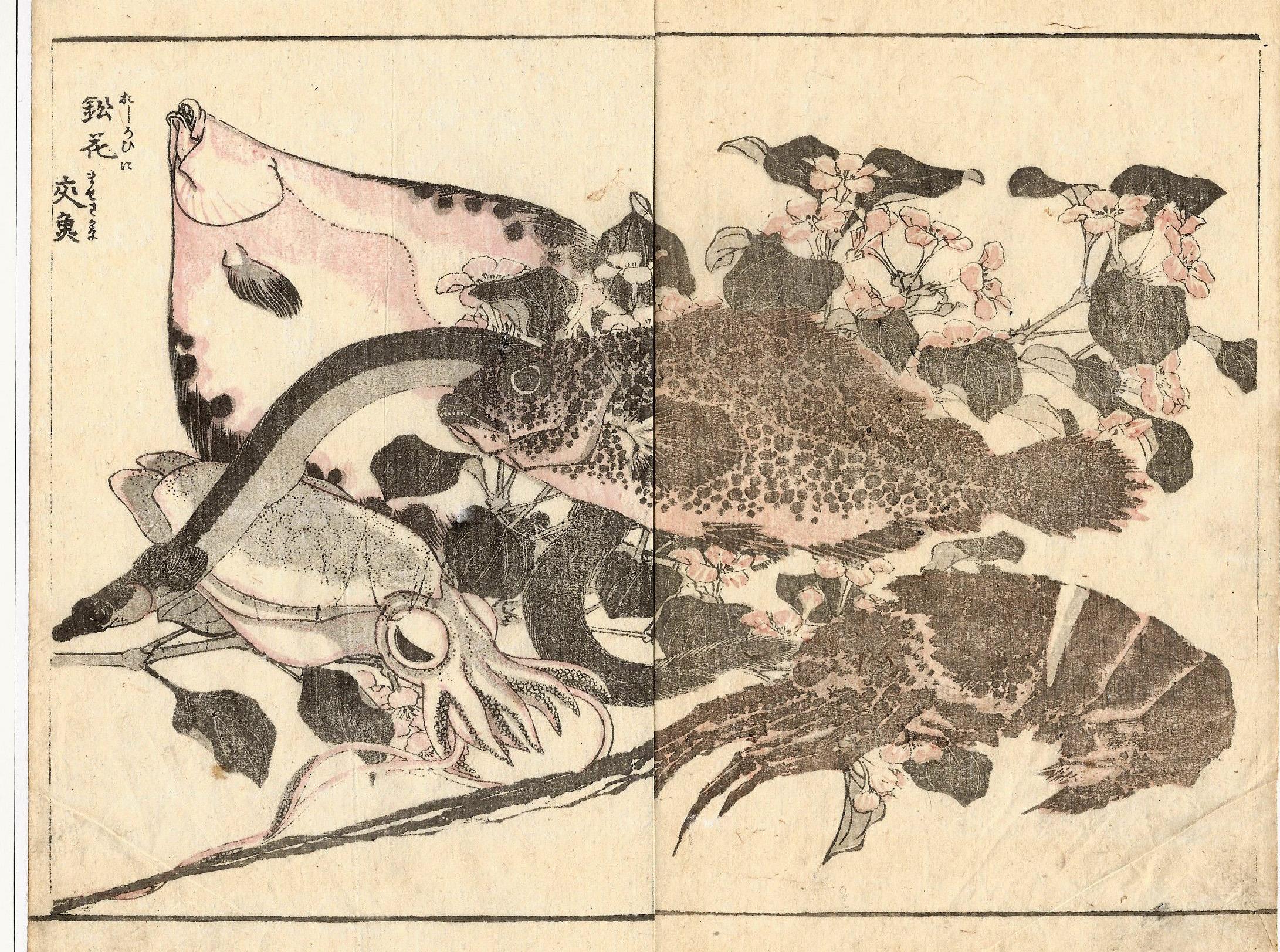 Katsushika HOKUSAI (Giappone, 1760 – 1849) – PESCI