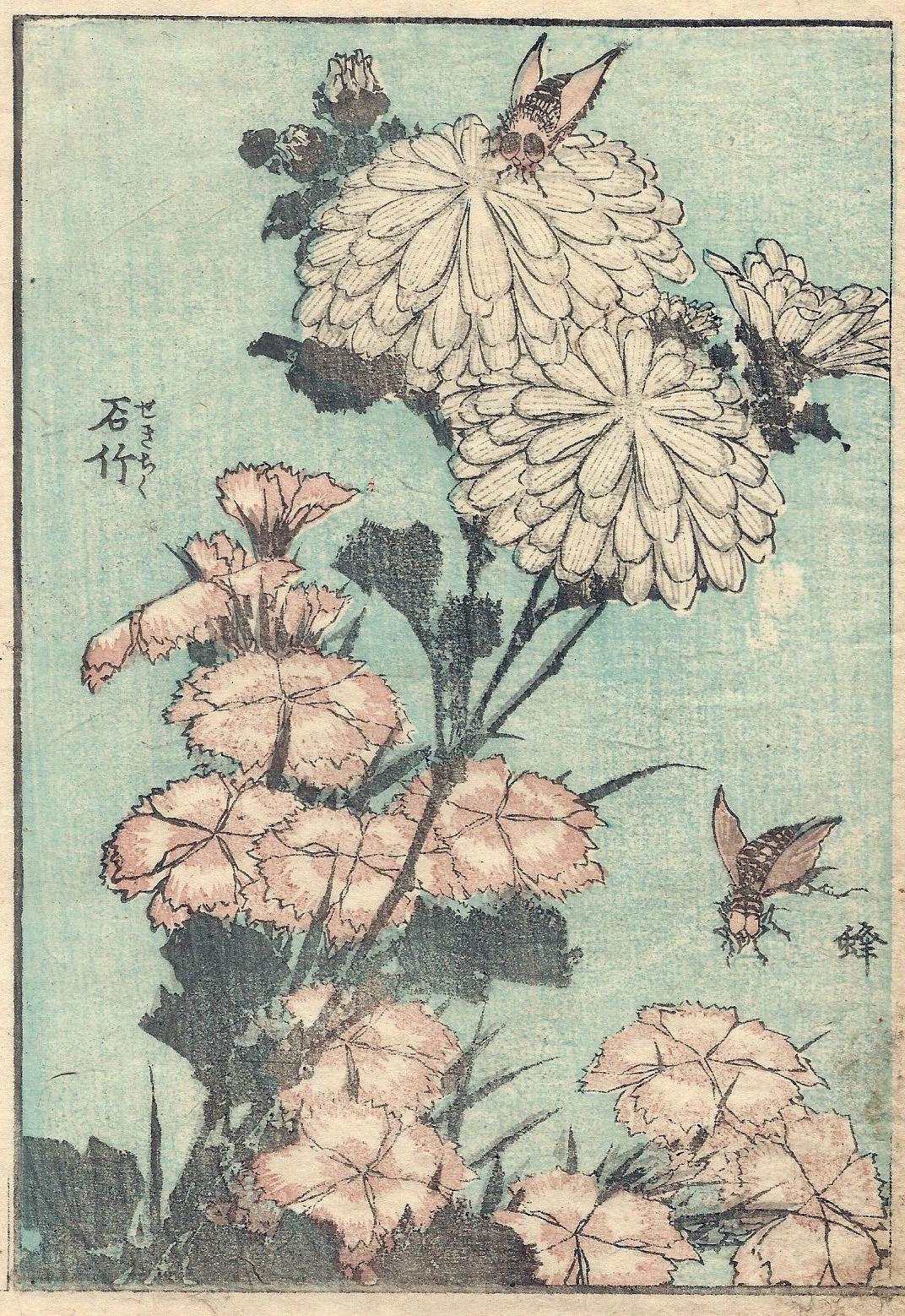 Katsushika HOKUSAI (Giappone, 1760 – 1849) – API SUI CRISANTEMI ESTIVI