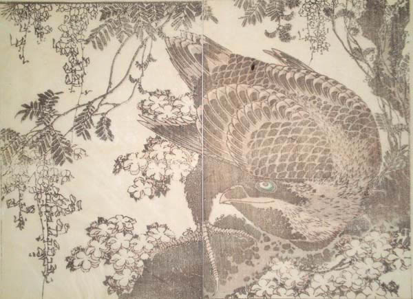 Katsushika HOKUSAI (Giappone, 1760 – 1849) – AQUILA REALE E GLICINE