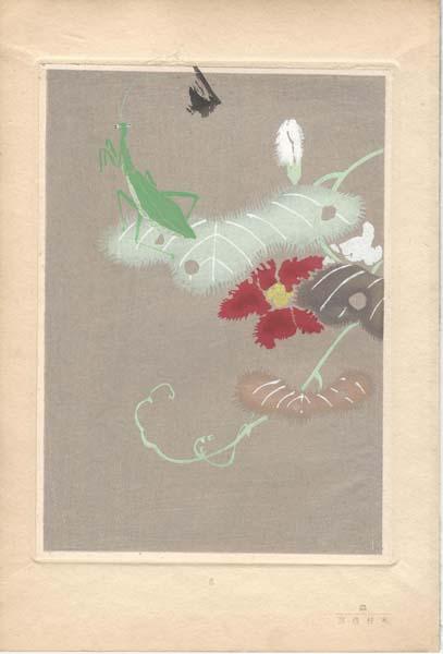 Kimura KOZO (Giappone, attivo inizi XX secolo) – MANTIDE RELIGIOSA