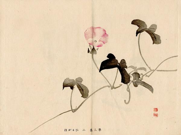 Kawabata GYOKUSHO (Giappone, 1842 – 1913) – BELLA DI NOTTE