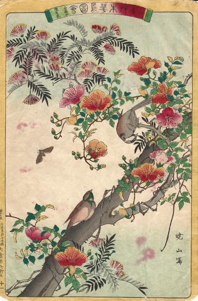 Watanabe GYOZAN (Giappone, attivo alla fine del XIX secolo) – COPPIA DI UCCELLI SU RAMO FIORITO