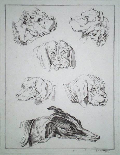 Johann Heinrich LIPS (Svizzera, 1758 – 1817) – SEI STUDI DI TESTE CANINE