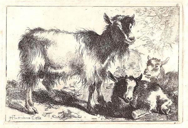 Francesco LONDONIO (Milano, 1723 – 1783) – CAPRA E DUE CAPRETTI