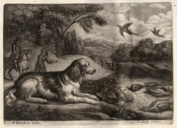 John Raphael SMITH (Gran Bretagna, 1752 – 1812) – CANE DA CACCIA da: F. Barlow