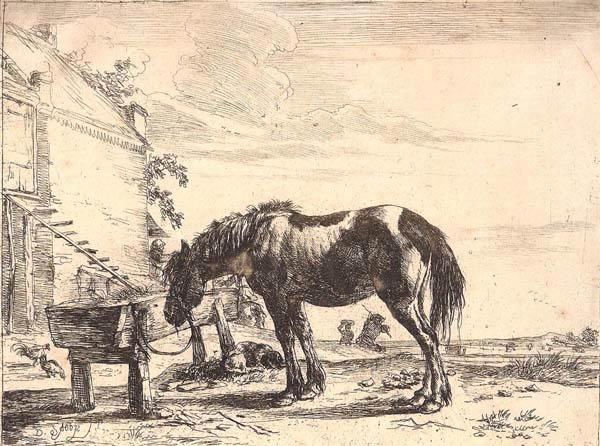 Dirk STOOP (Olanda, 1610 – 1686) – CAVALLO ALLA MANGIATOIA