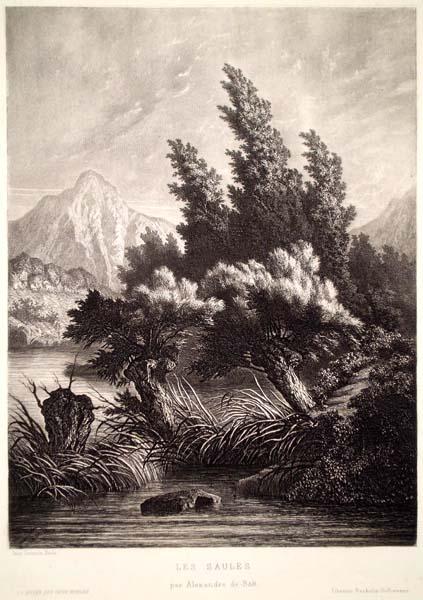 Alexandre de BAR (Francia, 1821 – c.a 1901) – LES SAULES