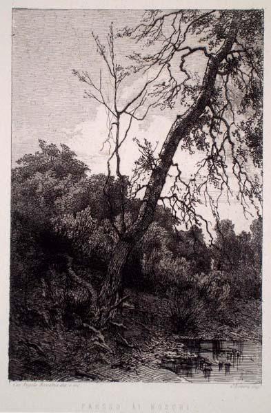 Angelo BECCARIA (Torino, 1820 – 1897) – PRESSO AI BOSCHI