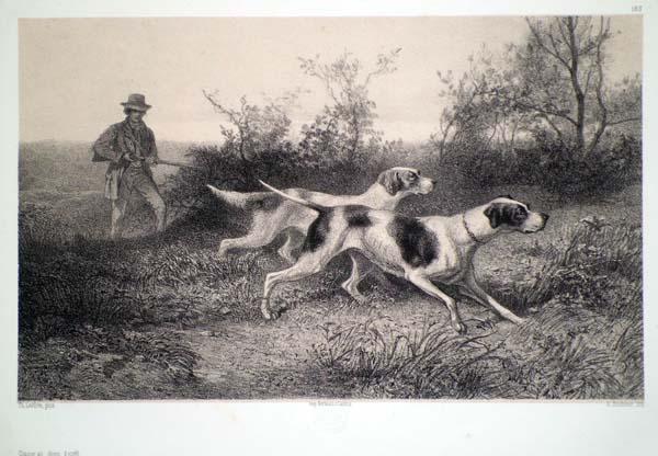 Karl BODMER (Svizzera, 1809 – 1893) – CHASSE AU CHIEN D'ARRET da Th. Laffitte