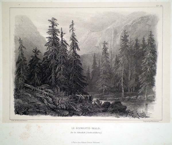 Alexandre CALAME (Svizzera, 1810 – 1864) – LE SCHWARTZ-WALD